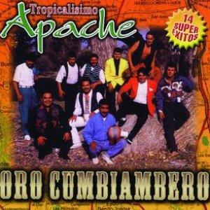 Image for 'Oro Cumbiambero'
