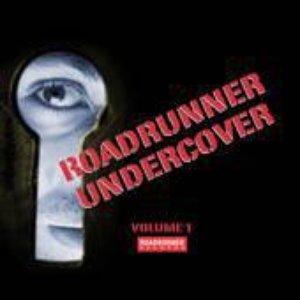Image for 'Roadrunner Undercover, Volume 1'