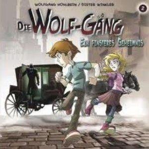 Image for 'Vol. 2 - Ein Finsteres Geheimnis!'