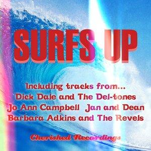 Image for 'Bustin Surfboards'