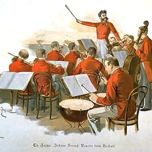 Image for 'The Vienna Johann Strauss Orchestra'