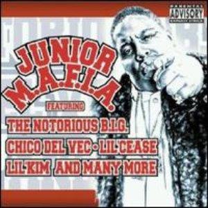 Image for 'Junior M.A.F.I.A.'