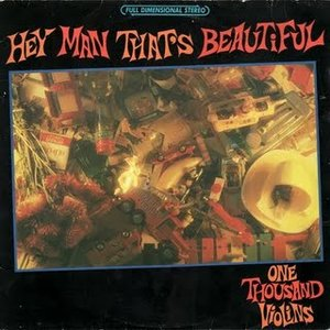Image for 'Hey Man That's Beautiful'