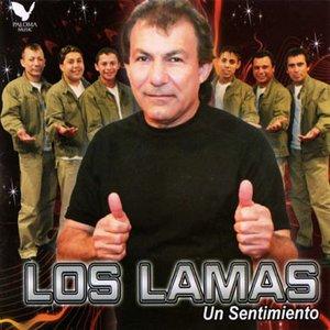Image for 'los lamas'