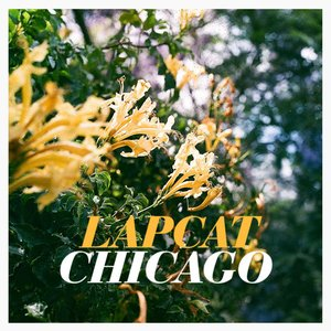 Image for 'Chicago - Single'