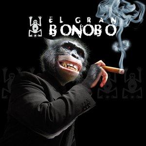Image for 'EL GRAN BONOBO'