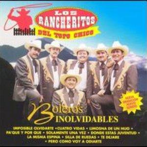 Image for 'Los Rancheritos Del Topo Chico'