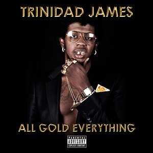 Image for 'All Gold Everything'