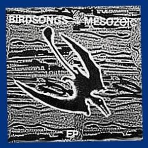 Image for 'Birdsongs of the Mesozoic'