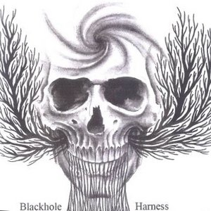 Image for 'Harness'