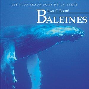 Imagem de 'Baleines'