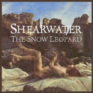 Imagem de 'South Col/The Snow Leopard'