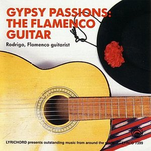 Image for 'Gypsy Passions:  The Flamenco Guitar'