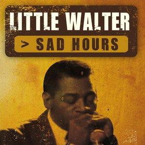 Bild für 'Sad Hours'
