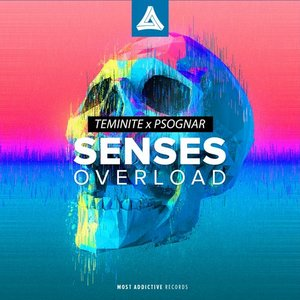 Image for 'Senses Overload'