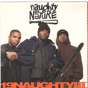 Image pour '19 Naughty III (US Release)'