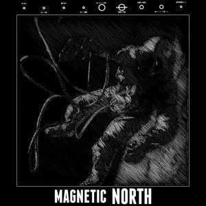 Image for 'Magnetic North'
