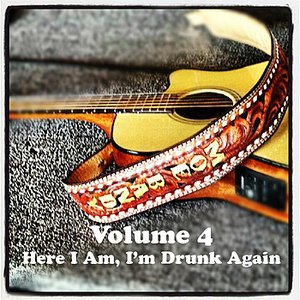 Imagem de 'Here I Am, I'm Drunk Again'