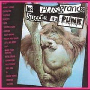 Image for 'Les Plus Grands Succes Du Punk'