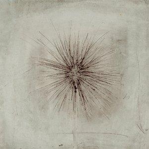 Image for 'Αχινός'