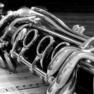 Image pour 'Budapest Clarinet Quintet'