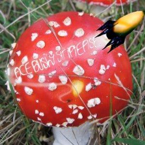 Image for 'A Little More Suspicion In Our Fairytales Plz'