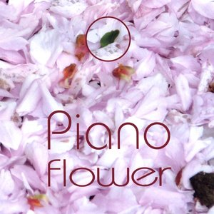 Image for 'Piano Squill'