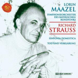 Image for 'Strauss: Sinfonia Domestica/Tod und Verklärung'