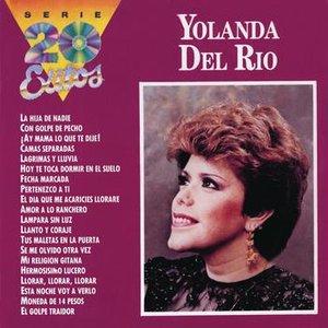Image for 'La Serie de los 20 Éxitos'