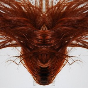 Image for 'A Collection Of Hair'