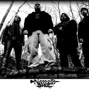 Image for 'Nailed Shut'