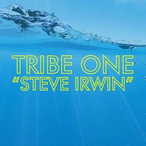 Image for 'Steve Irwin'