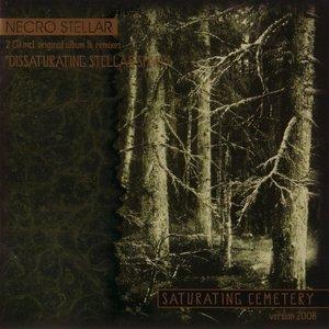 Bild für 'Saturating Cemetery (Version 2008)'