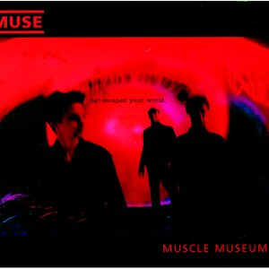 Image for 'Muscle Museum'