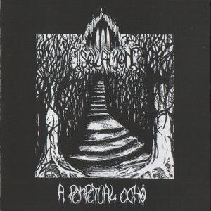 Image for 'A Perpetual Echo'