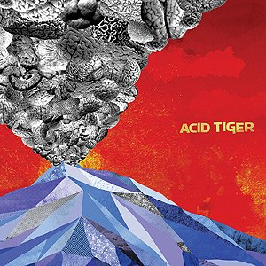 Image for 'Acid Tiger'