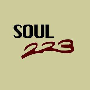 Image for 'Soul 223'