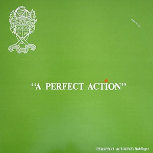 Image pour 'A Perfect Action (English Cricket)'