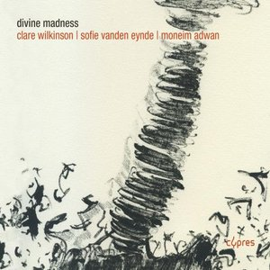 Image for 'Divine Madness'