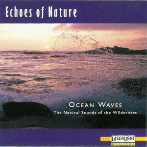Immagine per 'Ocean Waves'