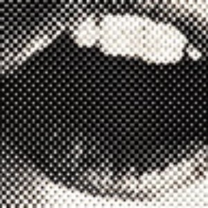 Image for 'MIEL FRAGA'