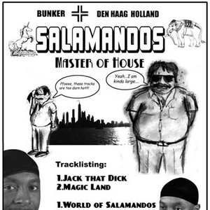 Image for 'World of Salamandos'