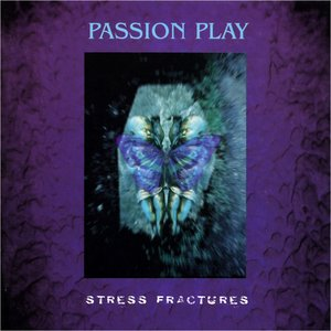 Image pour 'Stress Fractures'