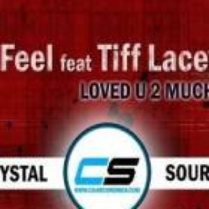 Image for 'Feel feat. Tiff Lacey'