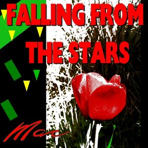 Image for 'Falling from the Stars'
