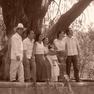 Image for 'Los Parientes De Playa Vicente'
