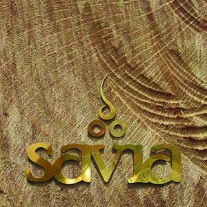 Image for 'Savia'