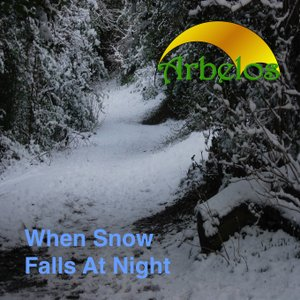 Image for 'When Snow Falls at Night'
