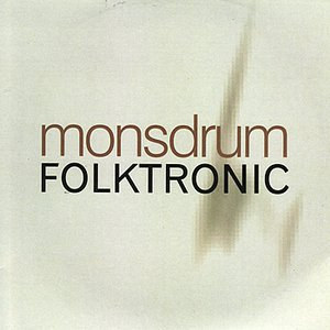 Image for 'Folktronic'