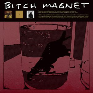 Image for 'Bitch Magnet'